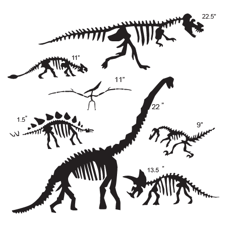 Dinosaur Fossil Collection Wall Quotes Wall Art Decal Wallquotes Com