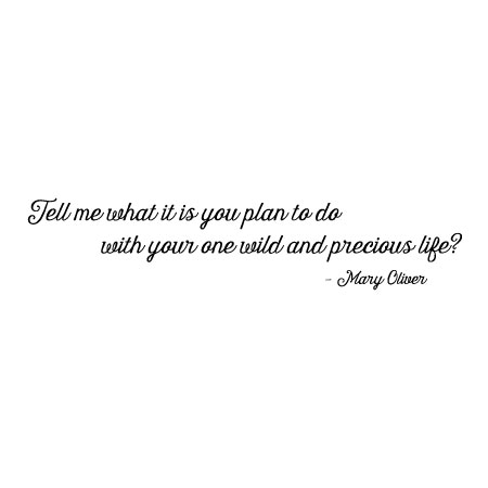 One Wild And Precious Life Wall Quotes Decal Wallquotescom