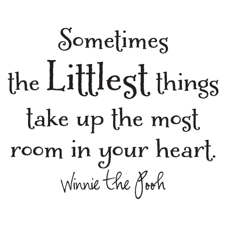 The Littlest Things Wall Quotes Decal Wallquotes