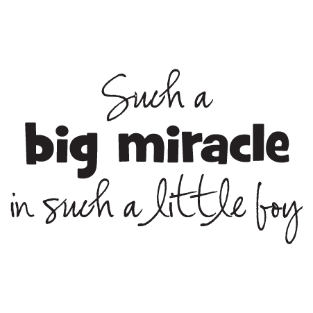 Little Boy Quotes Delectable Big Miracle Little Boy Wall Quotes™ Decal WallQuotes