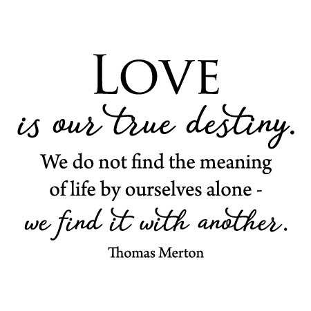 Destiny Love Quotes Extraordinary Love Is Our True Destiny Wall Quotes™ Decal WallQuotes