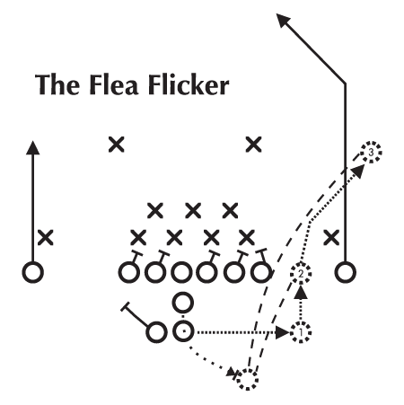 Flea flicker diagram wall quotes decal wallquotes see it with your wall color ccuart Images