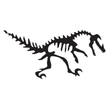 velociraptor dinosaur fossil wall art decal