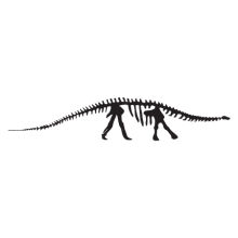 brontosaurus dinosaur fossil wall art decal