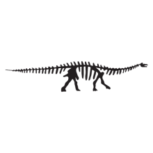 apatosaurus dinosaur fossil wall art decal