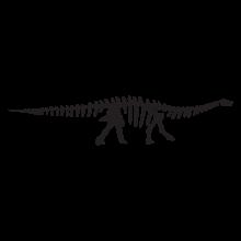 apatosaurus dinosaur fossil wall art decal