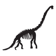 diplodocus dinosaur fossil wall art decal