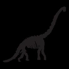 diplodocus dinosaur fossil wall art decal