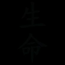life chinese symbol wall art decal