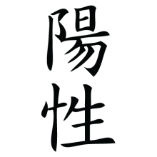 positive chinese symbol wall art decal