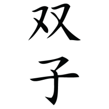 twins chinese symbol wall art decal