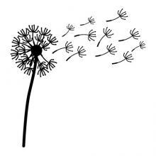 Large Dandelion with extra pieces wall quotes vinyl lettering wall decal home decor vinyl stencil large whole wall decal weeds flowers garden