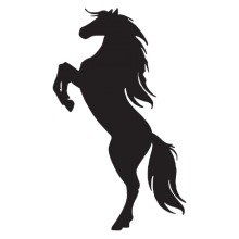 Silhouette of a horse on hind legs