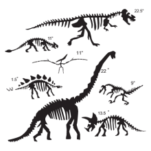 Dinosaur fossils wall decals