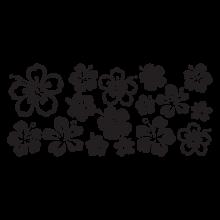 Various Hibiscus Flowers
