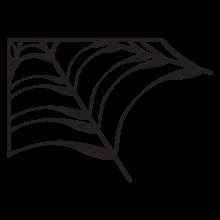 corner spiderweb wall decal