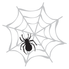 Spiderweb with a spider on top