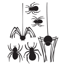various sized spiders wall decal