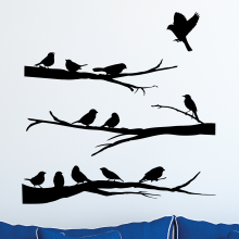 Variety of birds on Branches