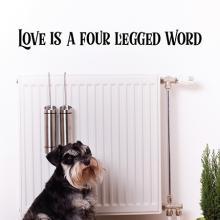 Love is a four legged word, pets, dog, cat, pet love, love, pet