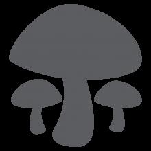 Mushrooms Chalkboard