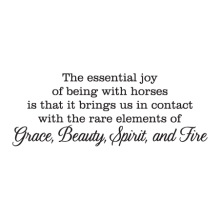 grace beauty spirit and fire wall decal