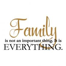 Family is not an important thing. It is everything wall quotes vinyl lettering wall decal home decor vinyl stencil home love