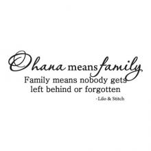 Ohana means family. Family means nobody gets left behind or forgotten. Lilo and Stitch, Disney, Hawaii, Home, movie,