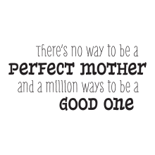 There's No Way to Be a  Perfect Mother(whimsical)