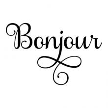 Bonjour wall quotes vinyl lettering wall decal french foreign language hello welcome home entry