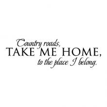 Country roads, take me home, to the place I belong wall quotes vinyl lettering wall decal home decor vinyl stencil rustic vintage song lyrics john denver
