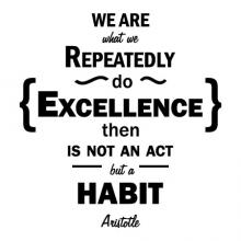 We Are What We Repeatedly Do. Excellence Then Is Not An Act But A Habit. -Aristotle wall quotes vinyl lettering wall decal home decor sticker philosopher stick with it motivational office