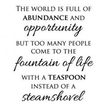 The world is full of abundance and opportunity but too many people come to the fountain of life with a teaspoon instead of a steamshovel.
