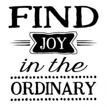 Find joy in the ordinary wall quotes vinyl lettering wall decal happy happiness inspiration every day