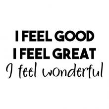 I feel good I feel great I feel wonderful wall quotes vinyl lettering wall decal home decor vinyl stencil inspirational inspiration bedroom wake up