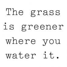 The grass is greener where you water it wall quotes vinyl lettering wall decal home decor vinyl stencil improvement work at it