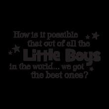 we got the best little boys wall decal