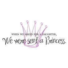 we were sent a princess kids vinyl wall decal