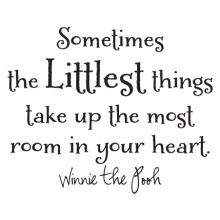 sometimes the littlest things take up the most room in your heart Winnie the Pooh decal