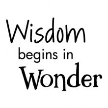 Wisdom begins in wonder wall quotes vinyl lettering wall decal home decor kids play playroom classroom explore learn teach