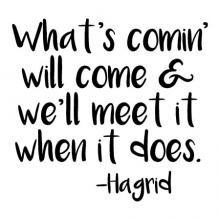 What's comin' will come and we'll meet it when it does. -Hagrid wall quotes vinyl lettering wall decal home decor vinyl stencil kids children harry potter future