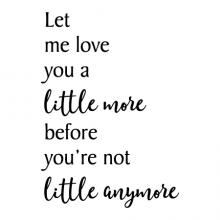 Let me love you a little more before you're not little anymore wall quotes vinyl lettering wall decal home decor vinyl stencil kids nursery stay little