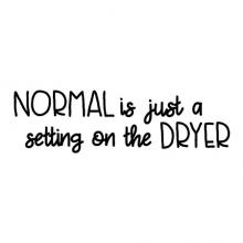 Normal is just a setting on the dryer wall quotes vinyl lettering wall decal home decor vinyl stencil laundry room