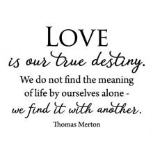 Love is our true destiny. We do not find the meaning of life by ourselves a lone - we find it with another. Thomas Merton