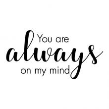 You are always on my mind wall quotes vinyl lettering wall decal love true love love birds willie nelson song lyrics music country music love music