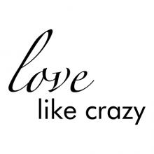 Love Like Crazy wall quotes vinyl lettering wall decal country music lyrics lee brice loving true love wedding marriage anniversary first dance song