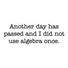 Another day has passed and I did not use algebra once wall quotes vinyl lettering wall decal home decor funny office math teacher
