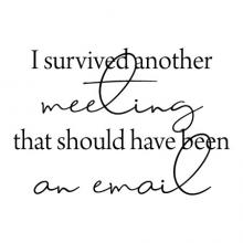 I survived another meeting that should have been an email wall quotes vinyl lettering wall decal home decor vinyl stencil office funny professional desk home office work