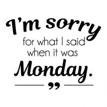 I'm sorry for what I said when it was Monday wall quotes vinyl lettering wall decal home decor vinyl stencil office professional funny office home office desk work