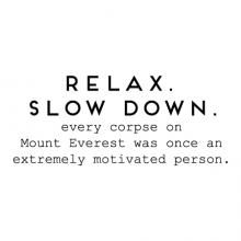 Relax. Slow Down. Every corpse on Mount Everest was once an extremely motivated person. wall quotes vinyl lettering wall decal home decor vinyl stencil office professional funny motivation desk work space